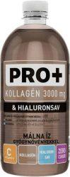 PRO+ Kollagén + Hialuronsav - Málna  0,75l  6/#